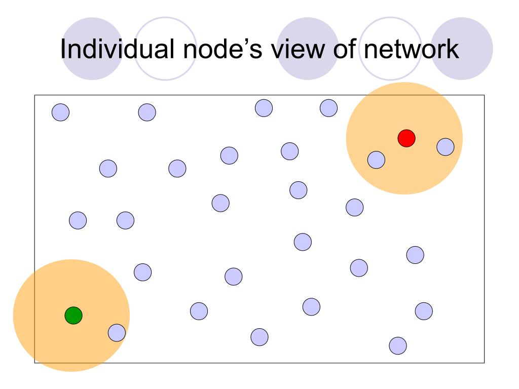 Individual node's view of network