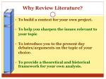 why review literature