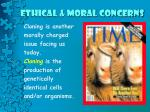 ethical moral concerns3