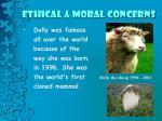 ethical moral concerns4