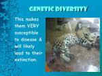 genetic diversity4