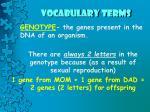 vocabulary terms3