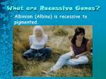 what are recessive genes4