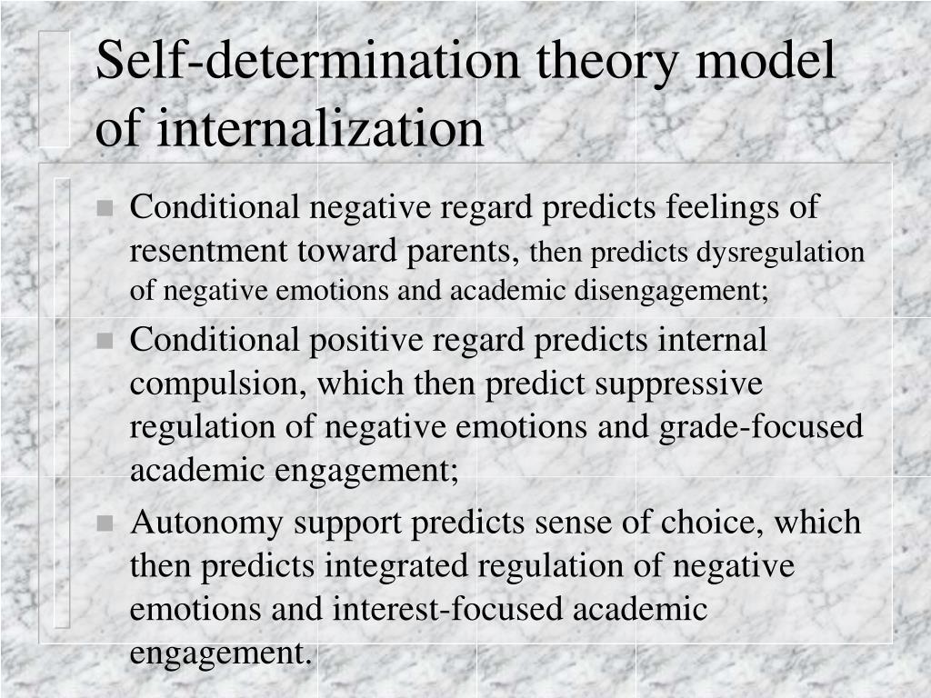 Self-determination theory model of internalization