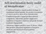 self determination theory model of internalization