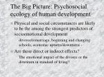 the big picture psychosocial ecology of human development