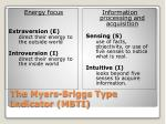 the myers briggs type indicator mbti