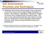 ice enforcement priorities and techniques