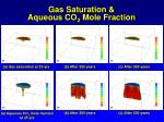 gas saturation aqueous co 2 mole fraction
