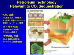 petroleum technology relevant to co 2 sequestration