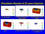 simulation results at 25 years injection