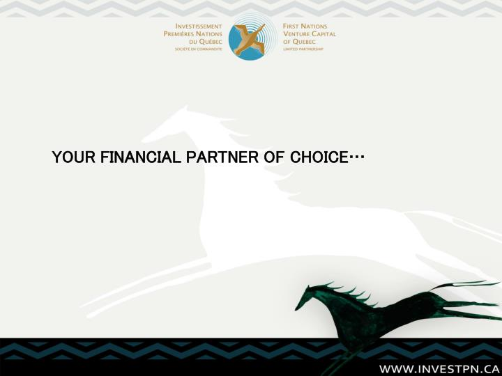 your financial partner of choice n.