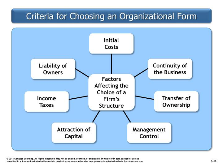 Criteria for Choosing an Organizational Form