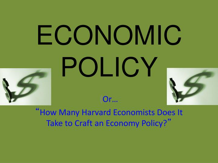 economic policy n.