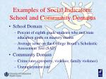 examples of social indicators school and community domains