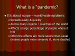what is a pandemic