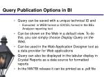 query publication options in bi