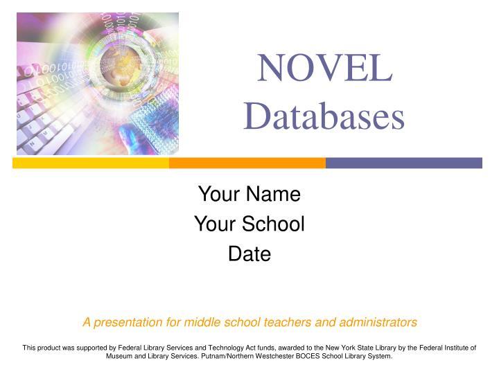 novel databases n.
