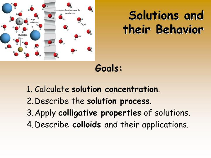 solutions and their behavior n.