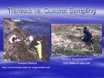 transect vs quadrat sampling
