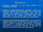 t rminos1