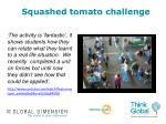 squashed tomato challenge3