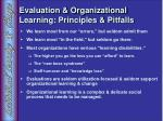 evaluation organizational learning principles pitfalls