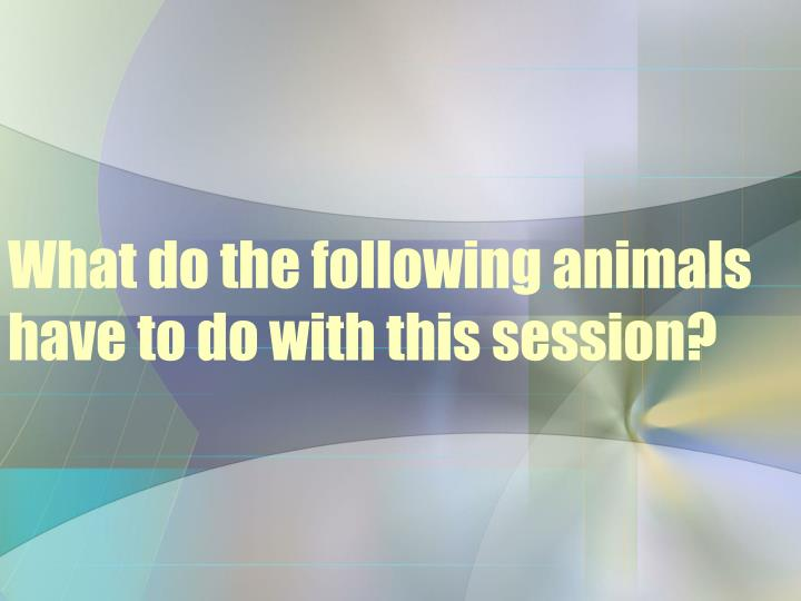 what do the following animals have to do with this session n.