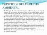 principios del derecho ambiental1