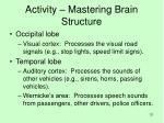 activity mastering brain structure6
