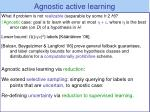 agnostic active learning