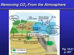 removing co 2 from the atmosphere