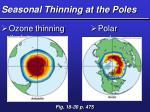 seasonal thinning at the poles