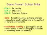 some forest school links