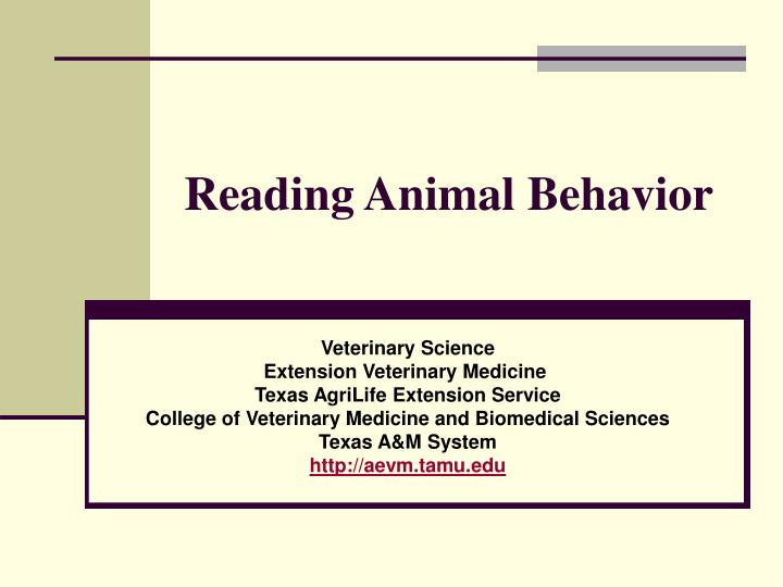 reading animal behavior n.