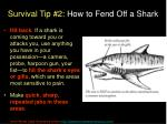 survival tip 2 how to fend off a shark