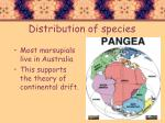 distribution of species