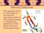 natural selection2