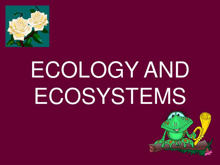 ecology and ecosystems n.