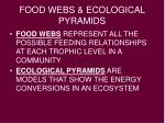 food webs ecological pyramids