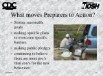 what moves preparers to action