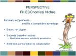perspective fill economical niches