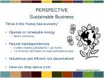 perspective sustainable business1