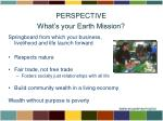 perspective what s your earth mission