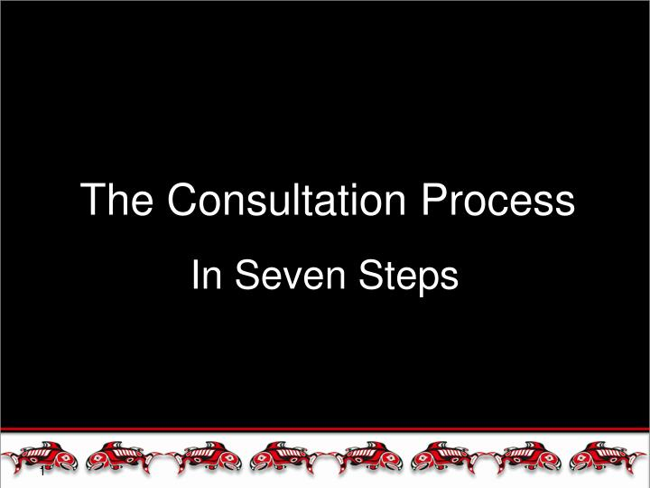 the consultation process n.
