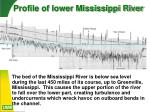 profile of lower mississippi river