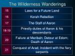 the wilderness wanderings1