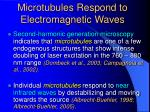 microtubules respond to electromagnetic waves