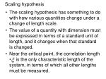 scaling hypothesis