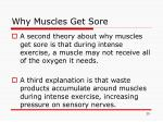why muscles get sore1